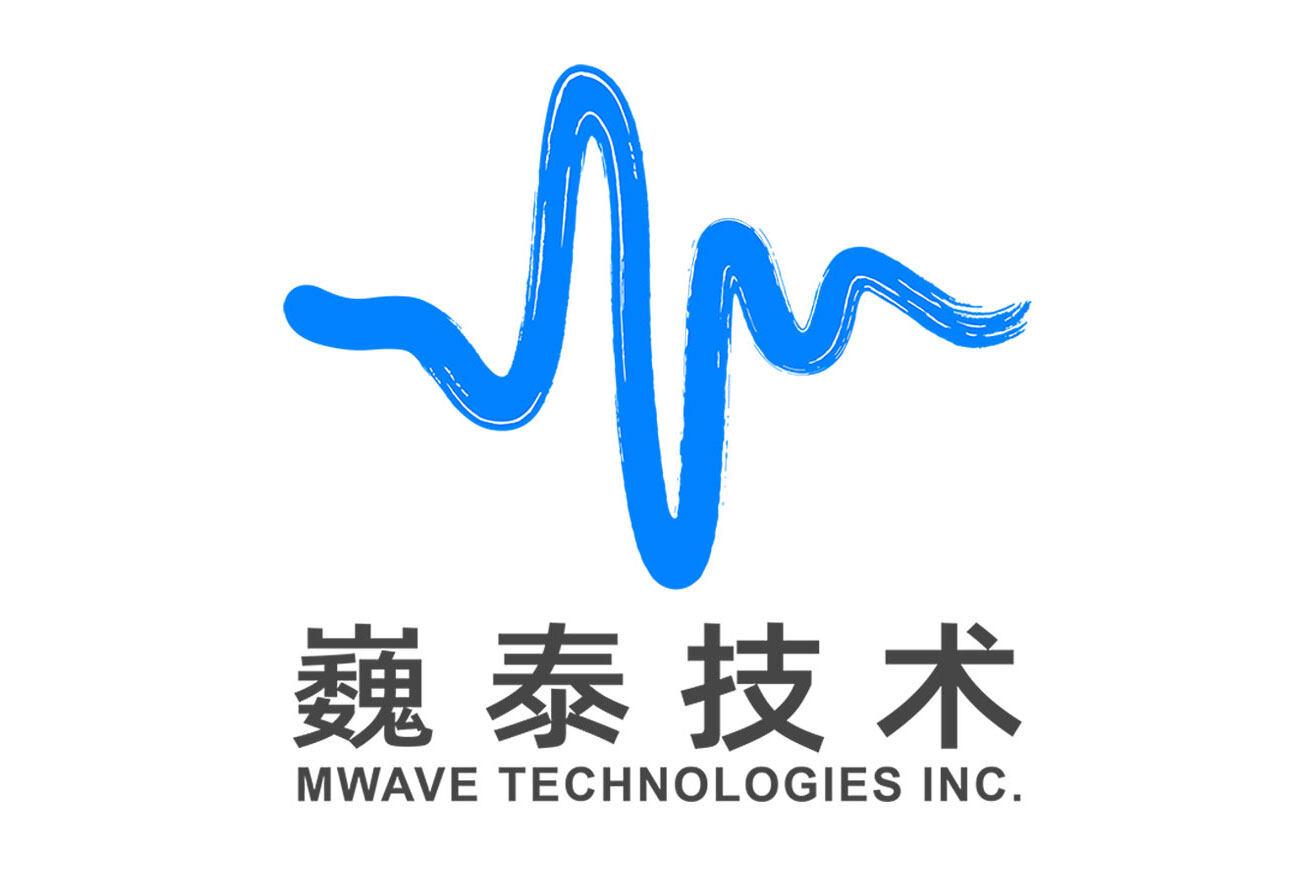 巍泰技术(武汉)有限公司