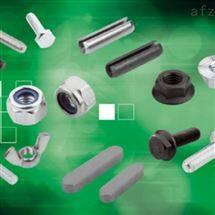 0019 08900-A2222X20-22-22NORELEM工具箱輸送機鉗子
