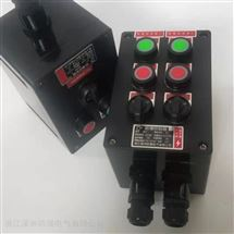 BXK2回路防爆防腐操作柱