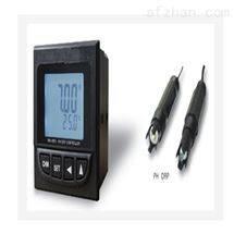 M388799工业在线PH/ORP 计 型号:PH12-PH8251