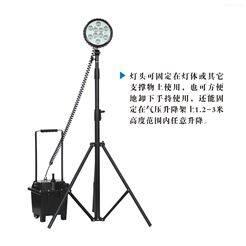 BAD305-C防爆强光工作灯 35W氙气灯 手提移动泛光灯