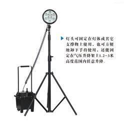 BAD305-C防爆強光工作燈 35W氙氣燈 手提移動泛光燈