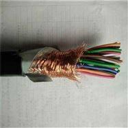 廊坊 DJYVP计算机电缆