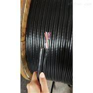 KVVRC9X1.0带钢丝绳控制电缆