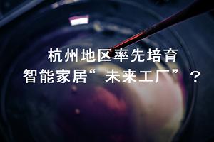 """全国示范:杭州公布首批智能家居""""未来工厂"""""""