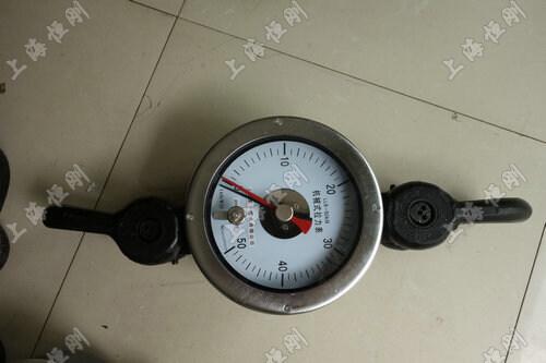 SGJX推拉式指针测力计