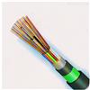 GYXTW-12B/1.3通信用光缆 皮线光缆