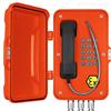 防爆抗噪扩音IP电话机 壁挂式防水防尘